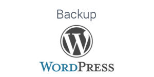 The Quick and Dirty Way to Back Up a WordPress Website