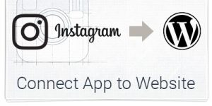 How to connect your application on Instagram Developer Sandbox
